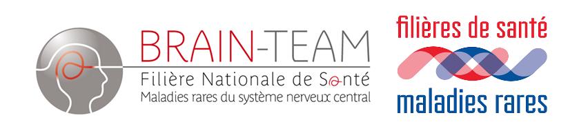 Logo BRAINTEAM